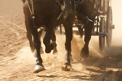 Horses pulling a wagon through a dusty field.