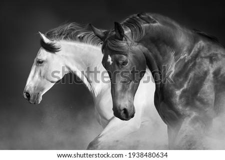 Horses run gallop in desert against sky Сток-фото ©