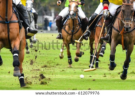 horses running in a polo game.
