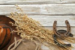 Horseshoes, dry oat plant, leather hat , rope,  burlap on wooden background