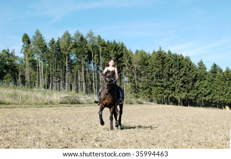 Horsewoman rides a horse across the field. Hanoverian .