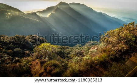 Horton Plains,Sri Lanka #1180035313