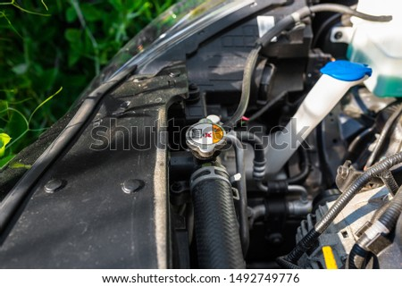 Hose connecting the car radiator with the engine, In the background the engine compartment. #1492749776