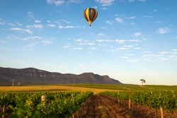 Hot Air Balloon drifting past a vineyard in the Hunter Valley