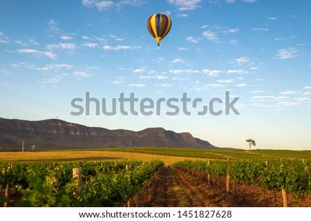 Hot Air Balloon drifting past a vineyard in the Hunter Valley Foto d'archivio ©
