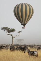 Hot air balloon flying over the african savannah