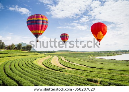 Hot air balloon over the field with blue sky - Shutterstock ID 358287029