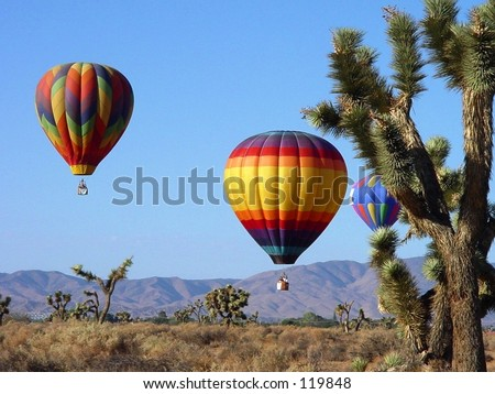 Hot Air Balloons over the Desert