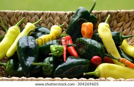 Hot and Poblano Peppers in a market basket - from farmers market to your table for the perfect spice blend