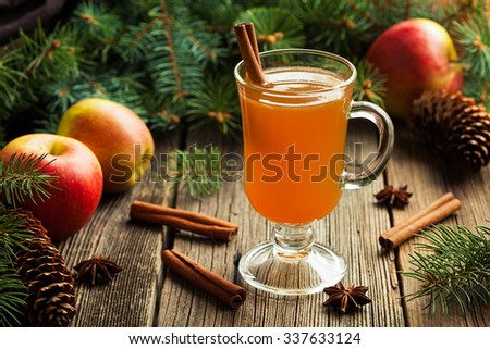 Hot apple cider traditional winter season drink with cinnamon and anise. Homemade healthy organic warm spice beverage. Christmas or thanksgiving holiday decoration on vintage wooden background.
