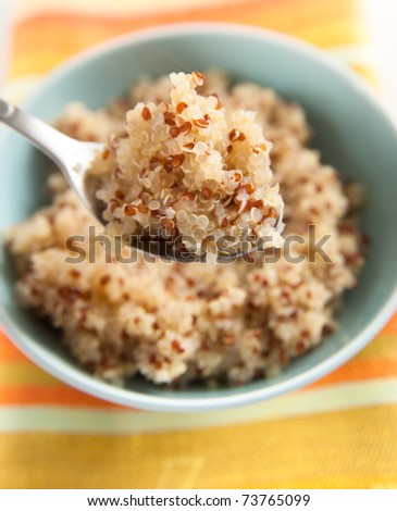 Hot Cereal Mix of Red and Whole Grain Quinoa - stock photo