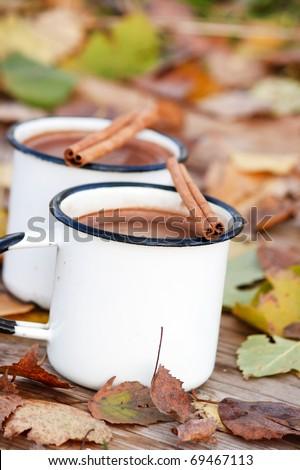 hot chocolate in the white mugs