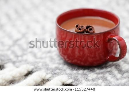 hot chocolate with cinnamon - sweet food /shallow DOFF/
