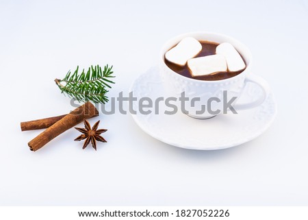 Hot chocolate with marshmallow, anasone, cinnamon  and Christmas tree branches on a white background, top view. Stok fotoğraf ©