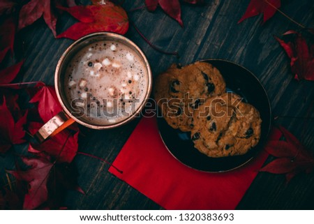 Hot coco and cookies stock image. Perfect for Christmas time. This image could be used for a Christmas party invitation, or to put on a screen to promote a Christmas party. Everyone will love this pic