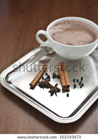 Hot cocoa with cinnamon and anis on silver tray