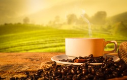hot coffee cup and beans with beautiful nature in morning