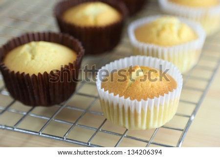 Hot Cupcake from Oven