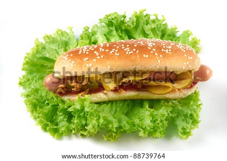 hot-dog american food
