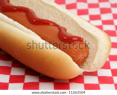 Red dog film essay