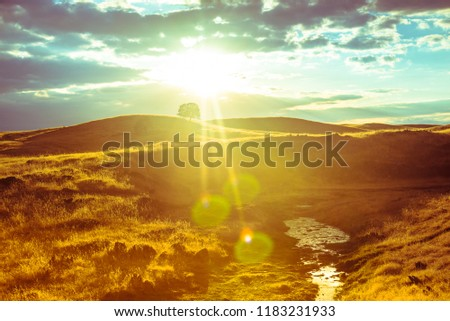 Hot dry Californian savanna landscape and beautiful sunset (with lens backlight reflections) on road trip from Yosemite National Park to San Francisco, California. Rustic yellow color design.