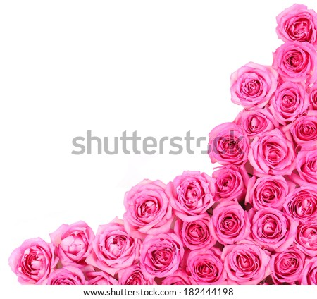 Free photos bright pink flowers corner isolated on white background hot pink roses over white background border 182444198 mightylinksfo