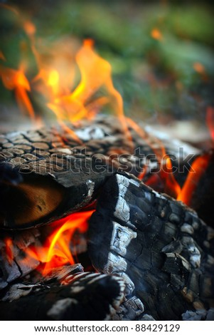 Hot, red burning firewood of campfire - stock photo