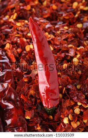 Hot Red Chilli Chillies pepper on red chili background