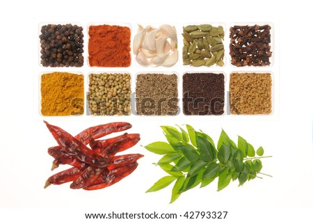 Hot Spices from Andhra, India