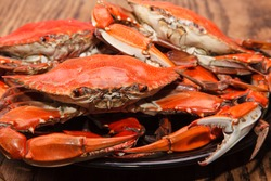 Hot Steamed Blue Crabs, symbol of Maryland State and Ocean City, MD