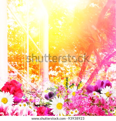 Hot sun and a profusion of flowers in the summer