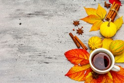 Hot tea with fall foliage, pumpkins, cinnamon sticks and star anise. Colorful autumn leaves for happiness mood. Grey stone table, top view