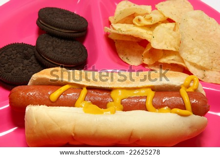 Hotdog, chips, cookies on childs tray.