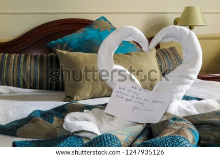 Hotel guests are greeted to lush blue and cream decor with fluffy white towels styled like kissing swans or love hearts.  The note of welcome from house service is a nice touch. #1247935126