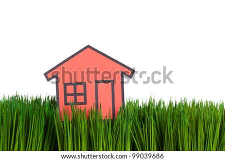 House and green grass close up, concept of Environmental Conservation - stock photo