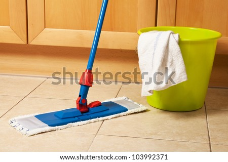 House cleaning with the mop