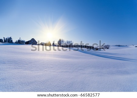 house field and sun in winter