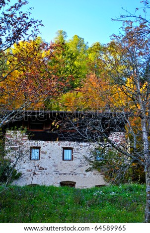 house in the woods in autumn