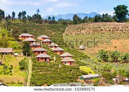 House made of clay at Rak Thai village in Pai, Mae Hong Son, Thailand