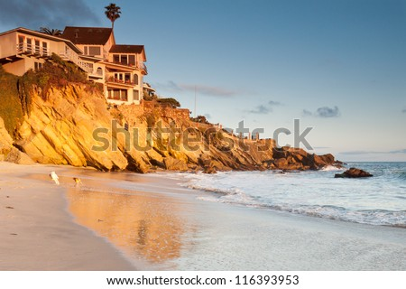 House on cliffs with playing dogs Luxurious house on cliffs in Southern California beach with playing dogs on the beach at sunset
