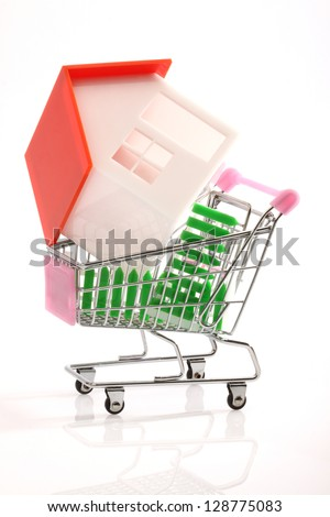 House on shopping cart over white