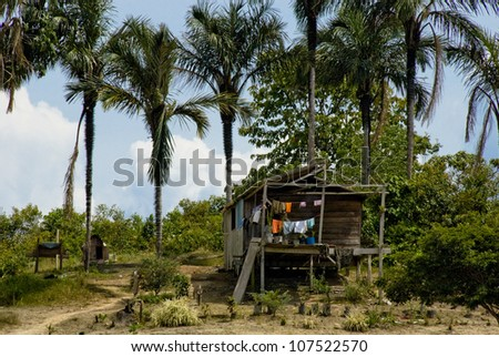 House on the bank of the Amazon River near Manaus, Brazil.