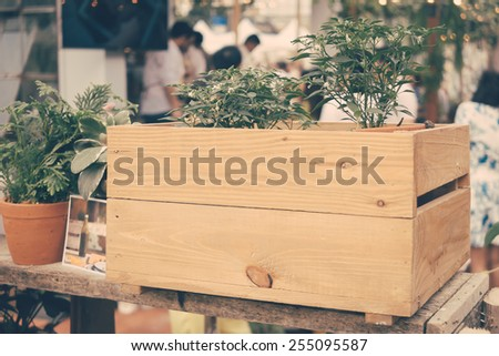 house plants in wooden box at...