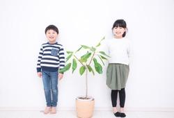 Houseplants and Kids