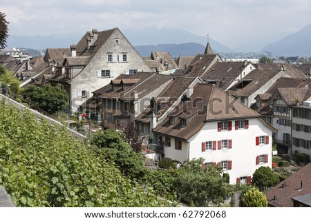 Houses and a terraced vineyard in Rapperswil, Switzerland