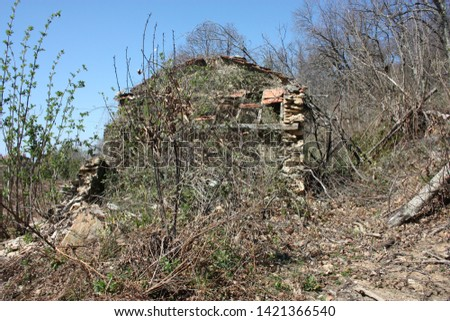 houses and structures built and then left abandoned in the isolation of nature high up in the hills in Tuscany #1421366540