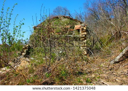 houses and structures built and then left abandoned in the isolation of nature high up in the hills in Tuscany #1421375048
