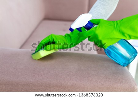 Housewife in rubber gloves spring cleaning and washing sofa with rag and spray in room at home. Household chores. Clean house, cleanliness.  #1368576320