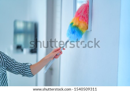 Housewife wipes dust with a dust brush during spring cleaning at home. Household chores and housekeeping #1540509311