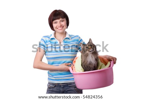 Cat In Laundry Basket. with laundry basket with